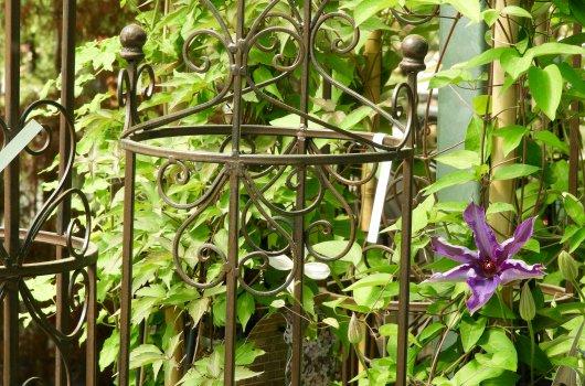 Gärtnerei in Hinwil